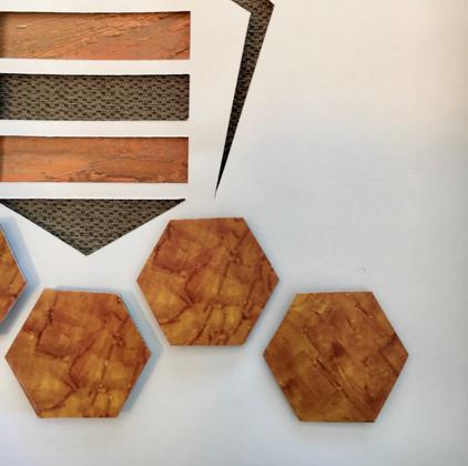 3D Honeybee in Shadowbox_2