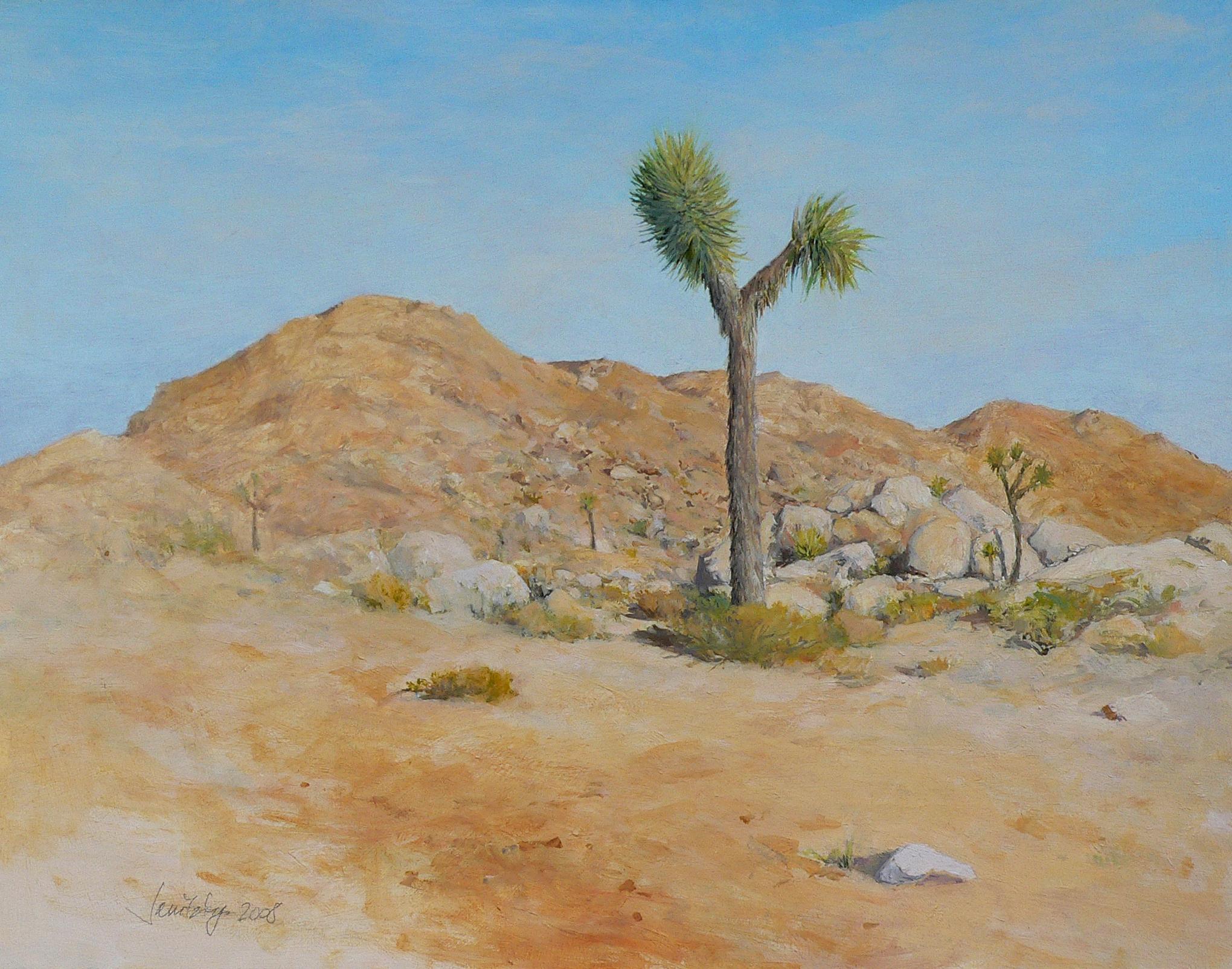 Rocks and Young Joshua Tree.