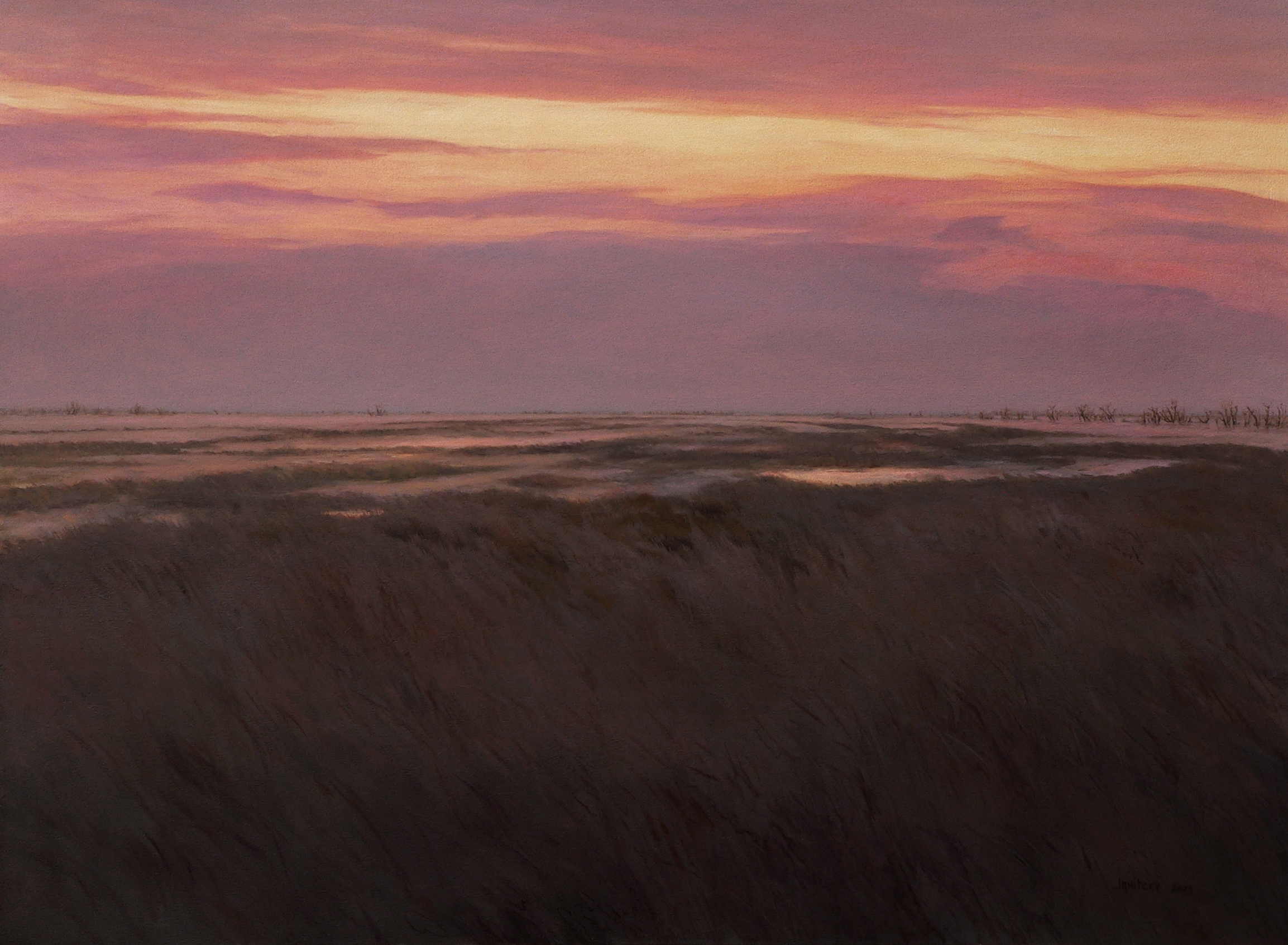 Yolo Bypass, Winter. 2013. Oil on canvas, 36 x 48.jpg