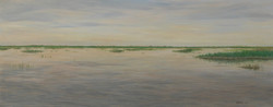 Yolo Bypass, Spring Tules.