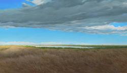 Marsh and Mount Diablo.