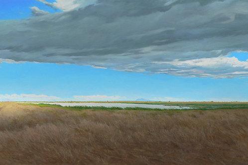 Marsh and Mount Diablo