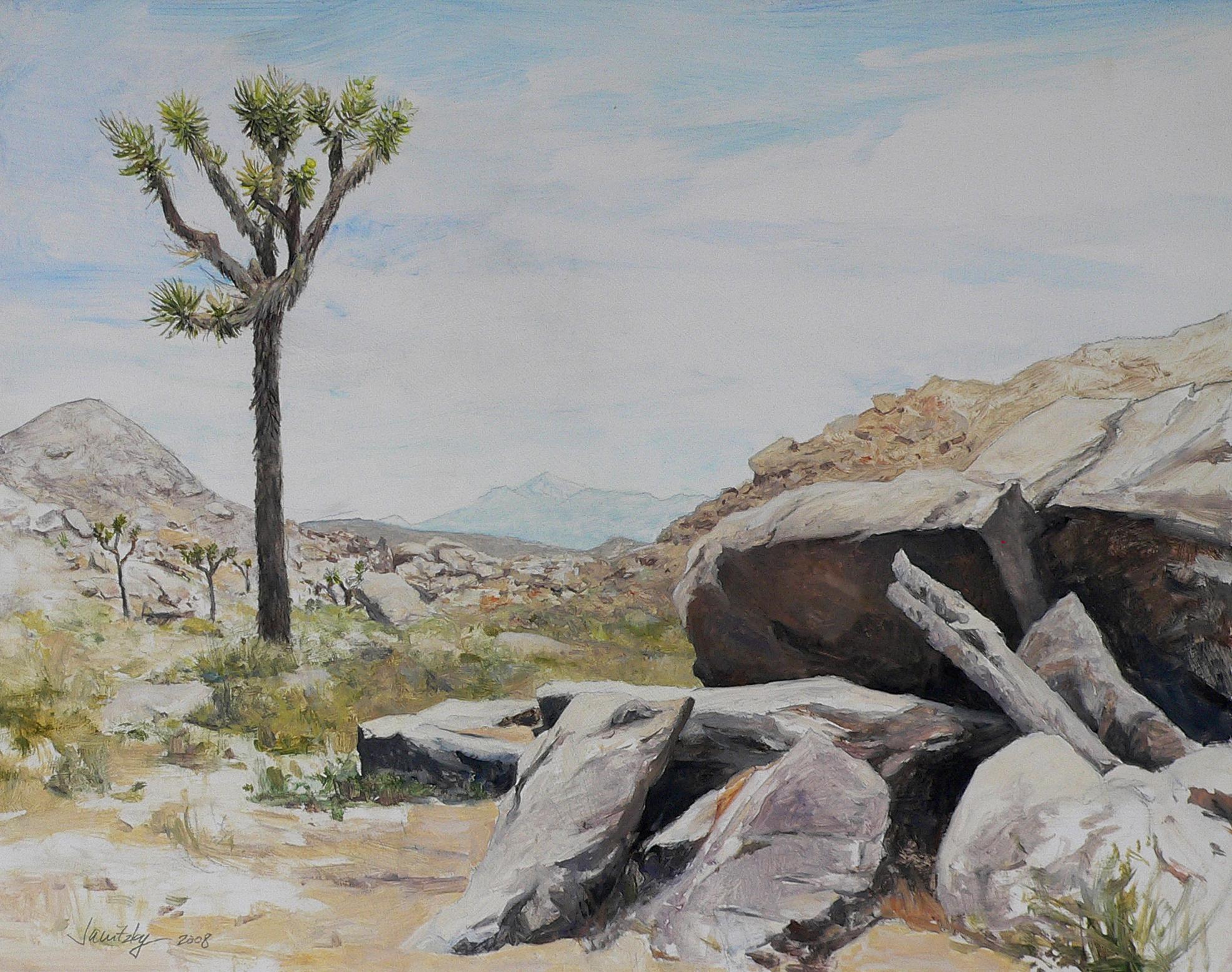Rocks and Joshua Tree.