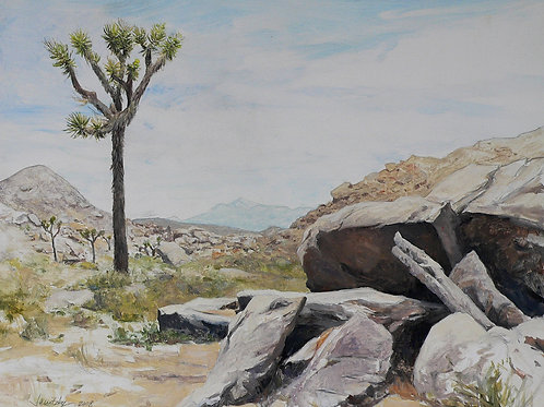 Rocks and Joshua Tree