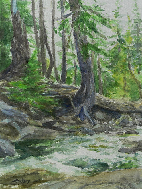 Lyons Creek, Erosion