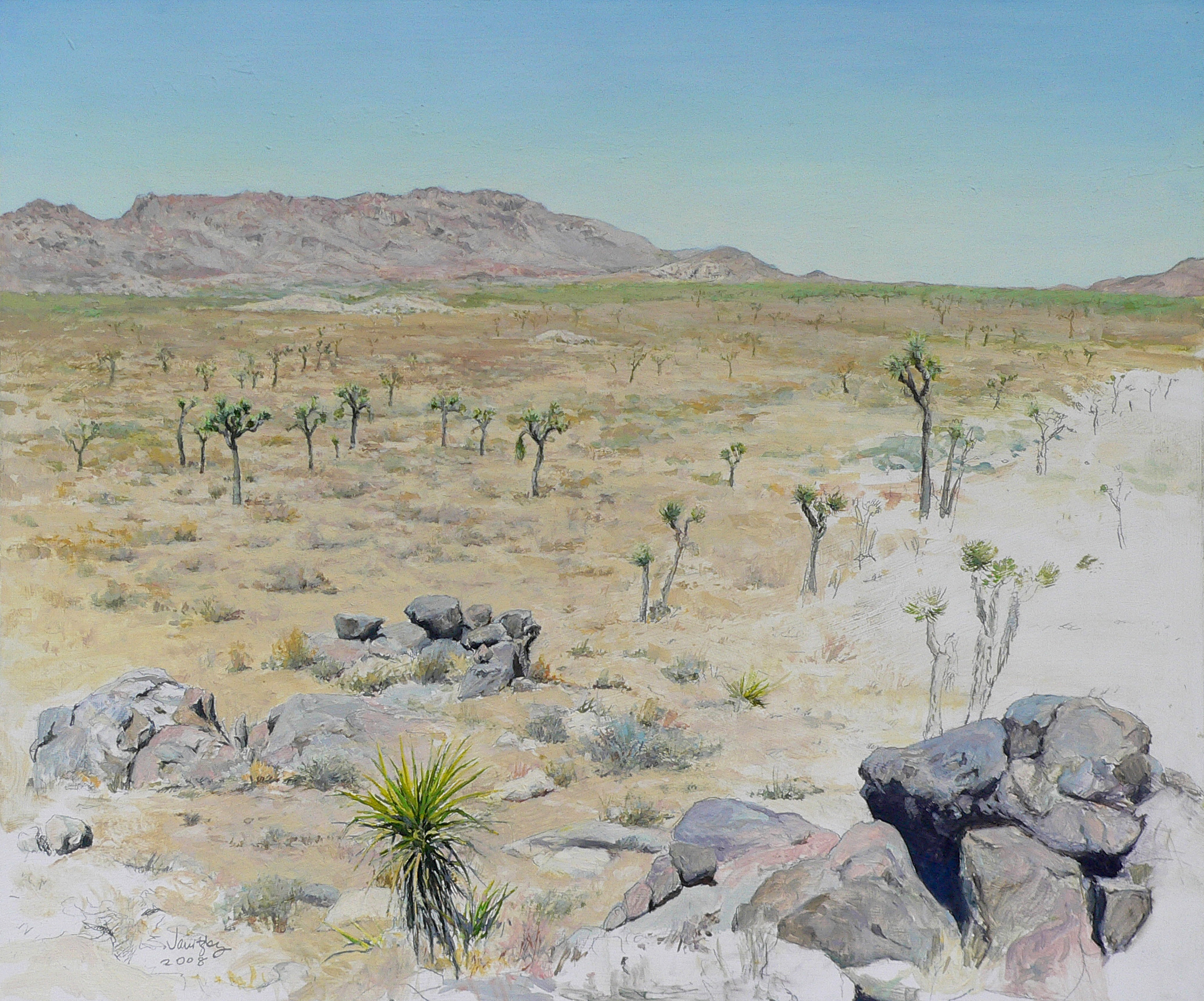 Queen Valley, Study With Yucca and Joshua Trees.