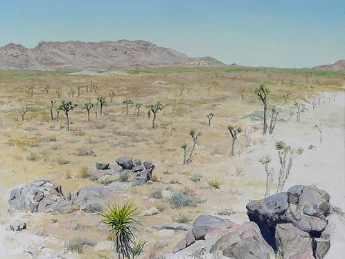 Queen Valley, Study With Yucca and Joshua Trees
