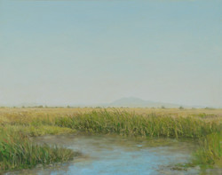 Mount Diablo and Tules on Summer Day.