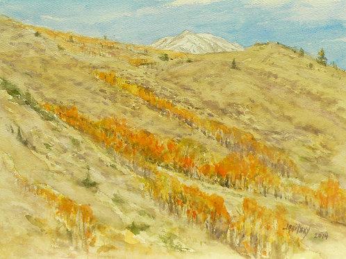 Aspen, Eastern Sierras