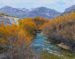 Rush Creek.