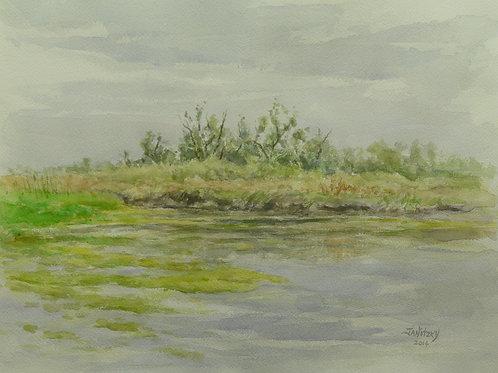 Putah Creek, Willows