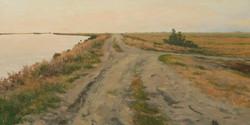 Levee, South Mokelumne River.