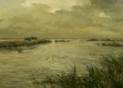 Cache Slough, Stormy Day.