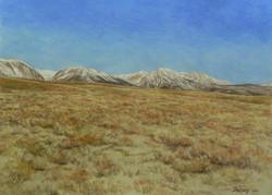 Sage Brush, Eastern Sierras.