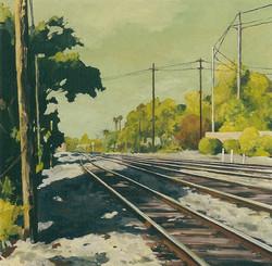 Tracks Approaching Davis.