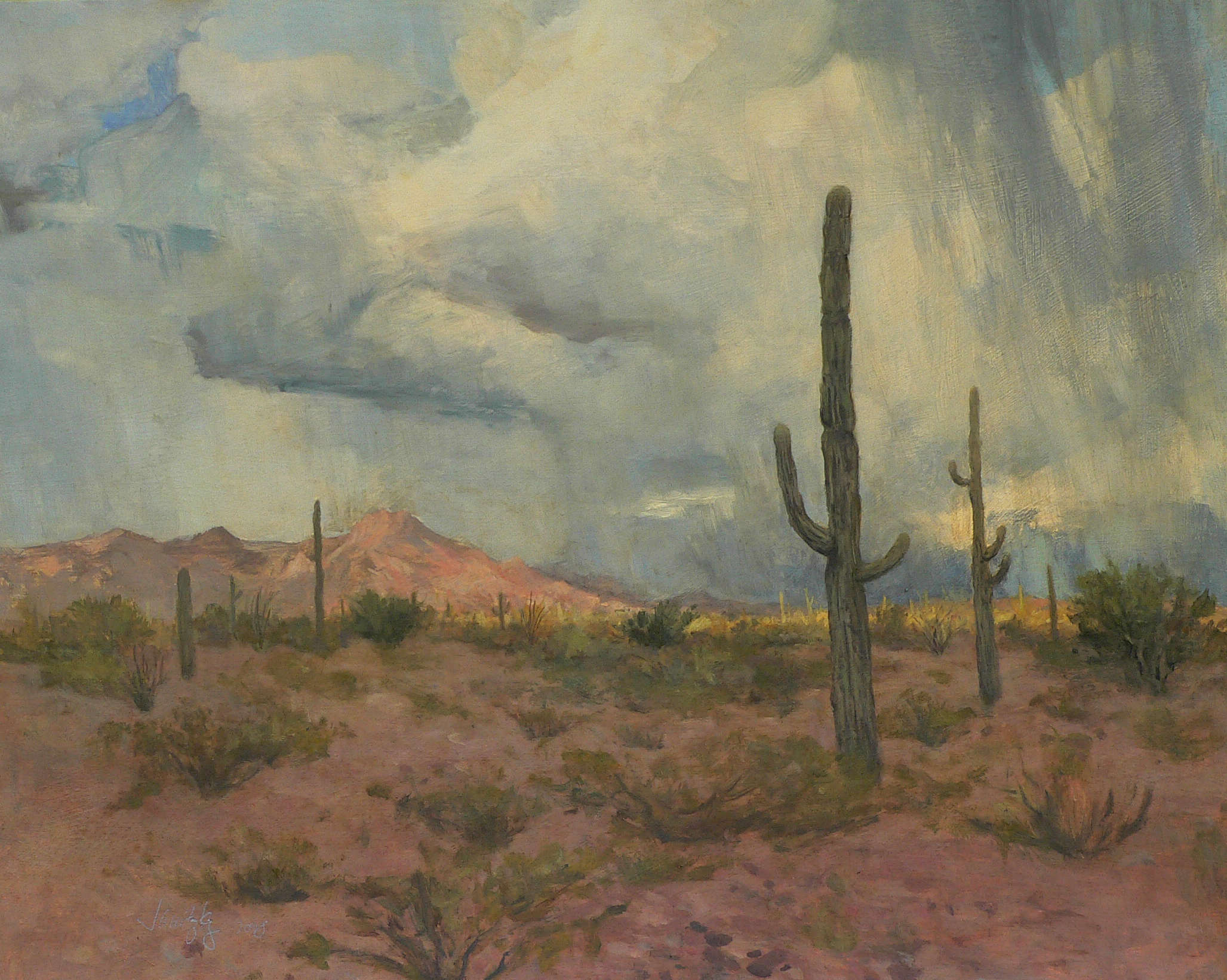 Saguaros, Thunderstorm.