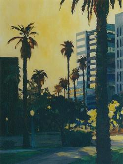 Sacramento, City Palms.