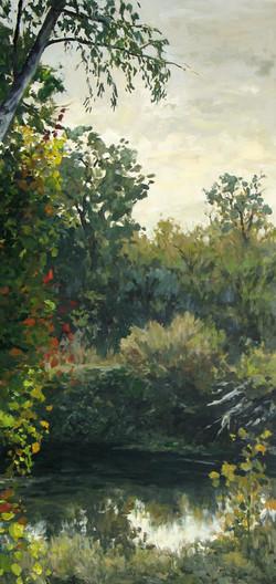Putah Creek, Vines.