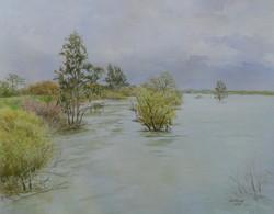 Putah Creek, High Water.