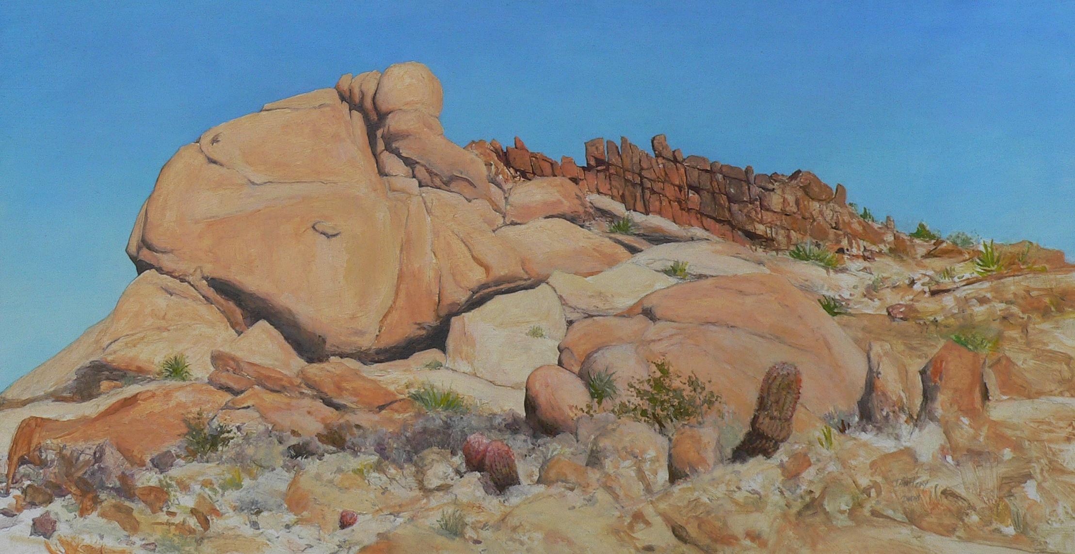 Rocks and Barrel Cacti.