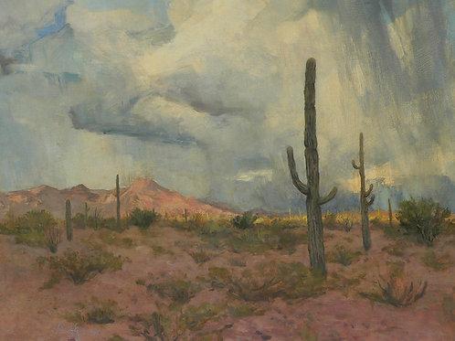 Saguaros, Thunderstorm