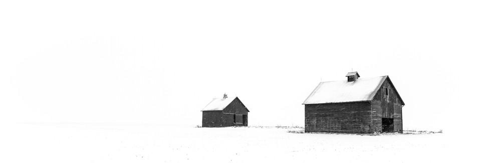 Winter Cribs B&W.jpg