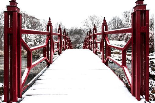 Winter Garden Bridge