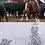 Thumbnail: Performance Horse Portrait - 8x10 Pencil