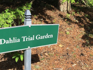 Volunteers Needed at our North Central Trial Garden