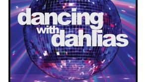 Fall Dahlia Show, Sept. 18-19, 2021