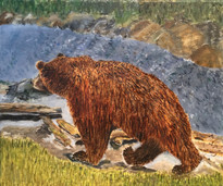 Bear Necessities ©
