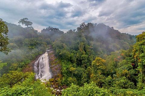 Waterfalls_Atukkad_Munnar_Unbound.jpg