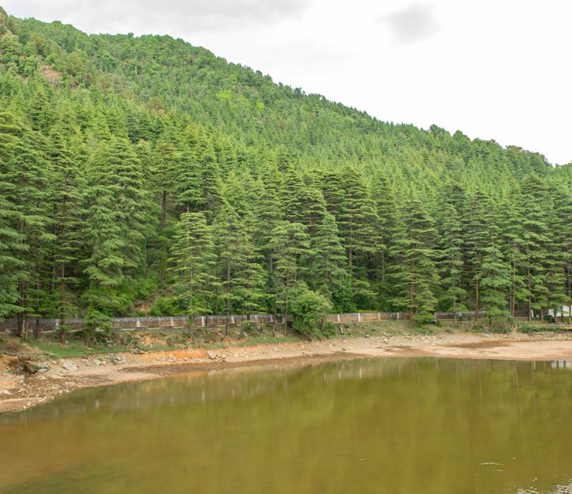 Dal Lake, Naddi Road, Mcleodganj