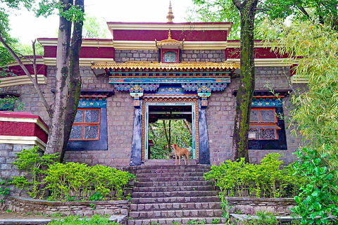 Norbulingka-Institute_Unbound.jpg