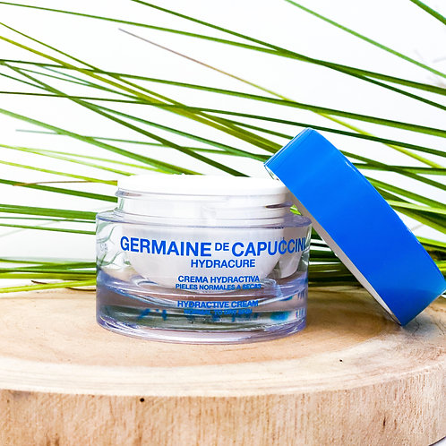 Hydractive Cream Normal to Dry Skin
