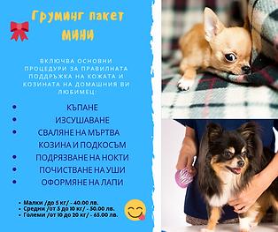 Пакет_мини.png