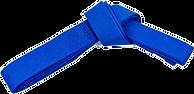 Синий айкидо без фона.png