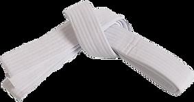 Белый пояс лучше (1).png