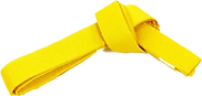 Желтый пояс прозр.png