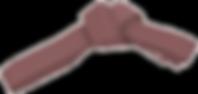 Коричневый пояс айкидо без фона.png