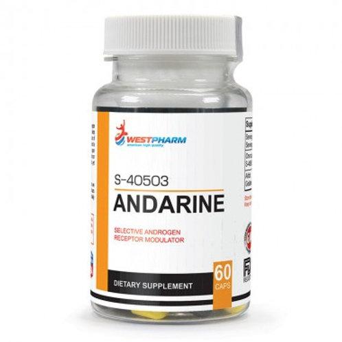 SARM Andarine S-40503 25mg