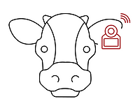 cow logo.png