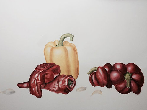 Watercolor Giclee Print - Peppers and Garlic