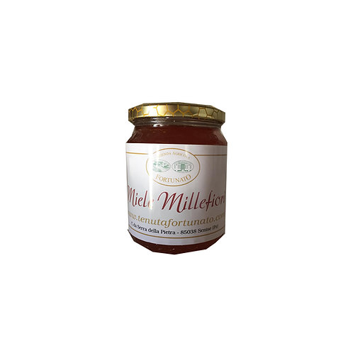 Miele di Millefiori - 500gr.