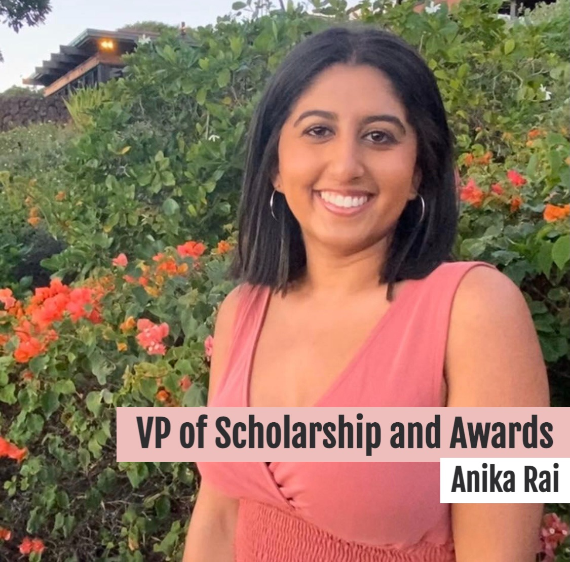 VP of Scholarships and Awards
