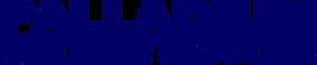 Palladium Logo 2020