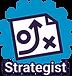 Strategist profile