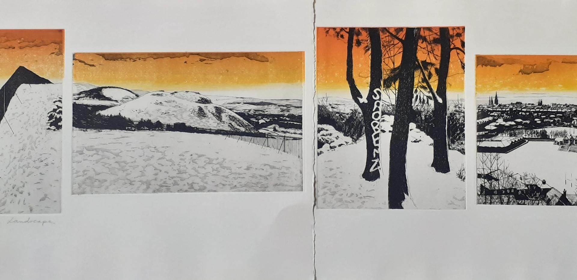 2011, Marks on the Landscape, 9/15j