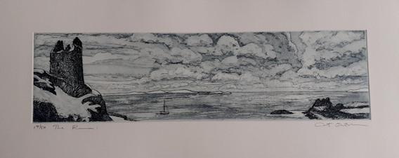 2012 The Ruin, 17/50
