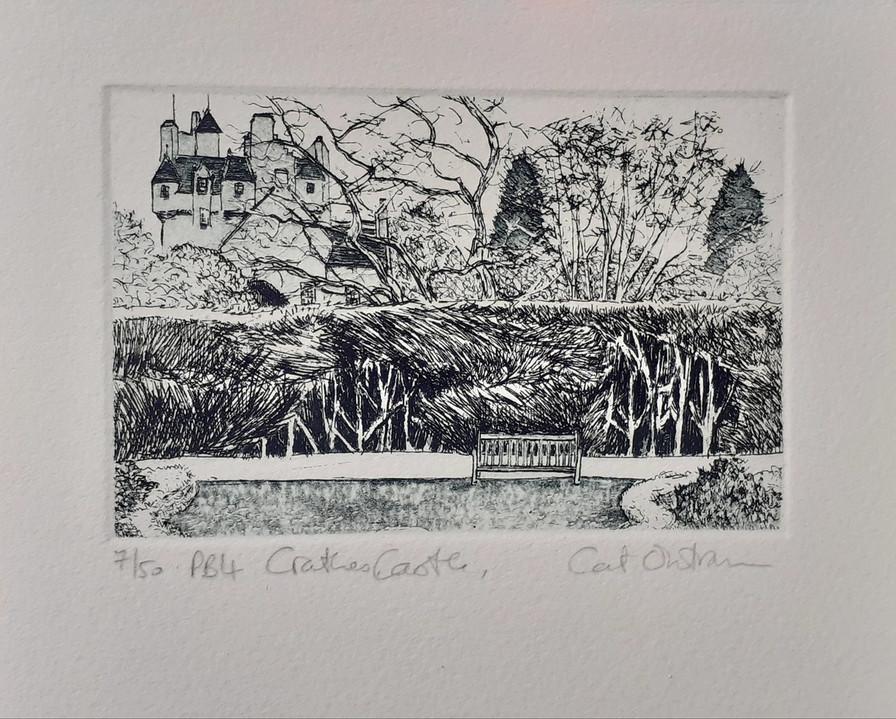 2012 Crathes Castle, 7/50